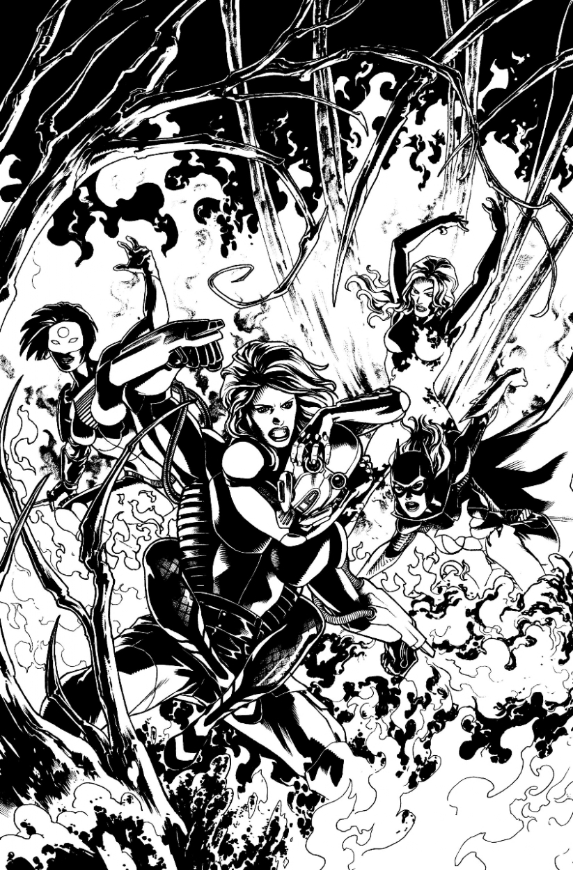Birds Of Prey Cover Batgirl Katana Poison Ivy And Black Canary In Erfauki D S Recently Sold Comic Art Gallery Room