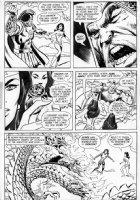 HECK, DON - Wonder Woman #206 page 21  Wonder Woman vs Nubia, Wonder Woman's twin sister Comic Art