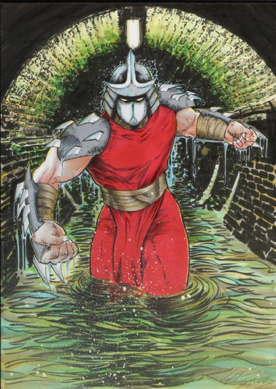Teenage Mutant Ninja Turtles Tmnt Shredder Lee Bradley In Mat